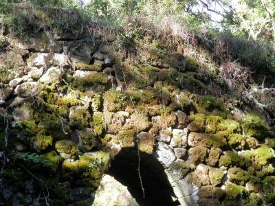 by E.V.Pita.... Spain, amazing rain forest in River Barragan (Pazos de Borben) / Por E.V.Pita.... Sorprendente bosque del río Barragan (Galicia, Pazos de Borbén y Fornelos de Montes) / A fraga do Barragán