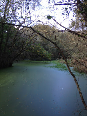 By E.V.Pita / River Anllóns to Ponteceso, Galicia, Spain, Fall 2012