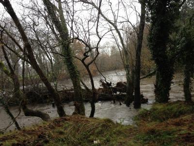 by E.V.Pita 2012 / River Tambre - Oroso (A Coruña, Galicia, Spain)