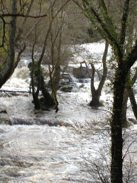 by E.V.Pita / River Anllons - Verdes (Spain, Galicia) Fall 2012