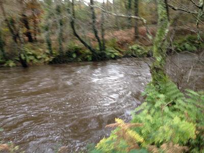 By E.V.Pita Fall 2012 / River Anllóns to Ponteceso, Galicia, Spain