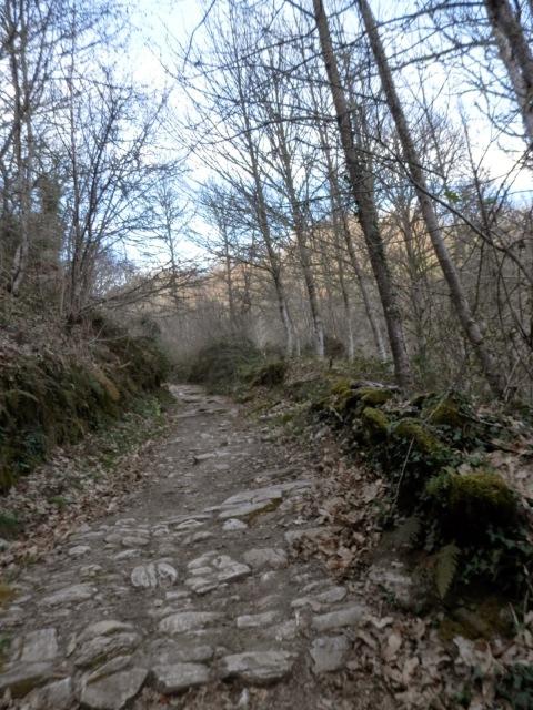 Spain, St James' Way, astonishing route Bierzo-Sarria    by E.V.Pita  http://picturesplanetbyevpita.blogspot.com/2015/04/spain-st-james-way-astonishing-route.html  Camino de Santiago, de Villafranca del Bierzo a Sarria    por E.V.Pita