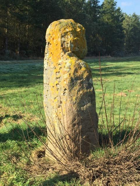Megalithican Iberia: Menhir of Pedra Chantada / Menhir de Pedra Chantada en Santaballa (Vilalba, Lugo) by E.V.Pita (2017)  http://archeopolis.blogspot.com/2017/01/megalithican-iberia-menhir-of-pedra.html